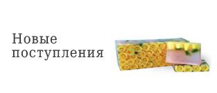 ссылка на товары-новинки